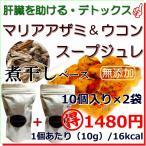 犬用 無添加 手作り スープ マリアアザミ ウコン 煮干