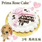 犬 用 ミニ ケーキ スターツリー 3号 サイズ馬肉 誕生日 あすつく 無添加 プレゼント アレルギー 人気 即日 6480円以上 送料無料 帝塚山WANBANA ワンバナ
