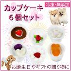 犬 用 誕生日 ギフト ボックス カップ ケーキ 6個 セット プレゼント 即日 スイーツ セット 人気 あすつく 国産 馬肉 ミニ おやつ 帝塚山WANBANA ワンバナ