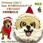 早期予約特典付き犬用のクリスマスケーキ 無添加 C ささみ たれ耳わんわんサンタ 4号12cm大 Xmas Cake 垂れ耳のワンちゃん