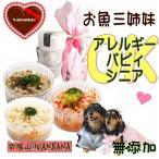 犬用バレンタインデー華やかラッピングギフト人気デリカテッセン