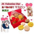 愛犬用バレンタインデーマカロン、ギフト用にぴったり