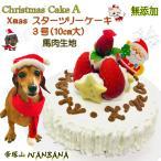 犬用のクリスマスケーキA 無添加 豪華スターツリー Xmascake3号10cm大 小さて可愛い ペットt手作りフード 馬肉生地  アレルギー対応 WANBANAワンバナ