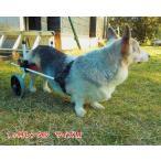 【1ヶ月レンタル】K9カート犬用車椅子後脚サポート M(11kg-18kg未満) 犬 車椅子 車イス コーギー ミックス 柴犬 中型犬