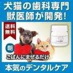 わんこの歯医者さん開発 Dr.YUJIRO デンタルパウダー(朝用)※約3カ月分 3000頭以上の犬の歯石除去/歯石取りを行ってきた獣医師が開発