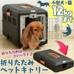 犬 キャリーバッグ 画像
