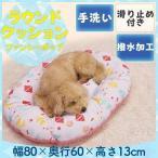セール/ペットベッド 犬 猫 ベッドサララfeel ラウンドクッション ファンシーポップ 93703 ドギーマンハヤシ (D) ひんやり