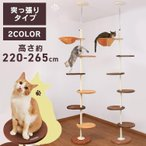 アイリスプラザ 猫用おもちゃ キャットポール ナチュラル.2