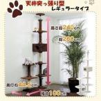 キャットランド CLD-240B ブラウン・ホワイト  猫用 キャットタワー 猫タワー 突っ張り型 爪とぎ おしゃれ 多頭飼い