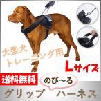 犬用 ハーネス 大型犬 中型犬 しつけ 胴輪 トレーニング 引っ張り防止 高品質 伸縮 のび〜るハーネス Lサイズ