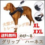 犬 ハーネス 大型犬 中型犬 超大型犬 しつけ 胴輪 トレーニング 引っ張り防止 高品質 伸縮 犬用 のび〜るハーネス XL XXL