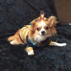 犬のコスチューム【KingMutt】ペット用コスチューム/ハロウィン仮装