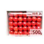 福島のさくらんぼ 最高級品種(佐藤錦・紅秀峰) 贈答用 手詰め 特秀 2L 500g 送料無料