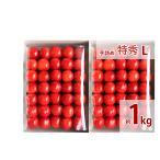 福島のさくらんぼ 最高級品種(佐藤錦・紅秀峰) 贈答用 手詰め 特秀 L 1k 送料無料