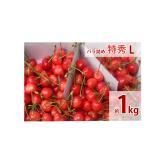 福島のさくらんぼ 最高級品種(佐藤錦・紅秀峰) 贈答用 バラ詰め 特秀 L 1k 送料無料
