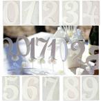 数字 ナンバー ガーランド 記念日 誕生日 結婚式 結婚記念日 ウェディング ウェルカムボード おしゃれ かわいい イニシャルカード ナンバー メール便対応