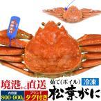 茹で冷凍松葉ガニ 約800〜900g  送料無料 まつば がに マツバ ガニ 蟹 ボイル 年中発送OK 売り切り終了