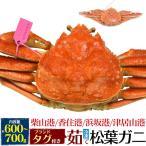 茹で 冷凍 松葉ガニ 約600〜700g 1匹 1杯 送料無料 兵庫県 ブランド まつば がに マツバ ガニ 蟹 ボイル 年中発送OK 売り切り終了