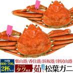 茹で 冷凍 松葉ガニ 約600〜700g 2杯セット 送料無料 兵庫県 ブランド まつば がに マツバ ガニ 蟹 ボイル 年中発送OK 売り切り終了