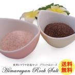 食用ヒマラヤ岩塩 ローズソルトとブラックソルトお試しセット そのままでも使いやすい細粒タイプ 送料無料