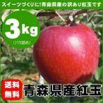 紅玉りんご 加工用 訳あり 青森県産 約3kg
