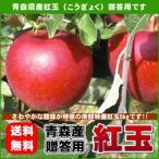ショッピング贈答 紅玉りんご 贈答用 青森県産 約5kg