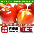 紅玉りんご 加工用 訳あり 青森県産 約10kg