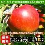 紅玉りんご 加工用 訳あり 青森県産 約5kg