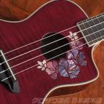 Luna Guitars ルナ ギターズ UKE FLORAL コンサート[UKE FLORAL](送料無料)(SAVAREZ Low-G弦 144RL プレゼント)