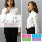 【送料無料】レディースワイシャツ(ブラウス)DLS-55(長袖開襟・ピンクストライプドビー)■2点までゆうパケット配送