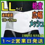 コルセット 腰痛ベルト プロガードライト・メッシュ プラスチックステイ LL アシスト  骨盤ベルト 医療用 大きいサイズ 日本製 通気性 腰痛 腰痛コルセット