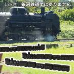 南部鉄器 文鎮 ペーパーウェイト 汽車 Nanbu-tekki locomotive paperweight