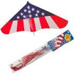 ゲイラカイト アメリカン Gayla Kite 風に乗って気持ちよく飛ぶ凧