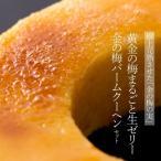 金の梅の美「黄金の梅」のまるごと生ゼリーと金の梅ブリュレバームクーヘン