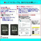 ニンテンドー 3DS・2DS・Wii U Pro コントローラー 【2個セット】互換バッテリー (交換ドライバー無) 互換バッテリー本体のみ