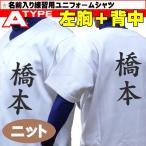 MIZUNO ミズノ 野球ユニフォーム 昇華プリント 名前入り練習用ユニフォームシャツ (ニット) Aタイプ (左胸+背中) 12JC9F6001-NS