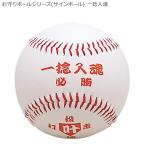 お守りボールシリーズ(サインボール) 一捻入魂 BB78-03(a-1138372)