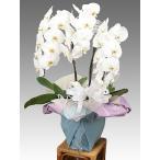 お供えに贈る花なら専門店でおまかせ下さい!