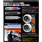 31 スリーワン スポーツラインマフラー SUZUKI SKYWAVE250スカイウェイブ(CJ43A) / typeS (CJ43A) 02/8-