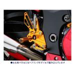 BABYFACE ベビーフェイス バックステップ SUZUKI GSX1300R ハヤブサ(隼)