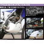 CYCLE-AM サイクラム スキッドプレートタイプII KAWASAKI KLX250ES