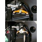 BABYFACE ベビーフェイス シフトスピンドルホルダー SUZUKI GSX-R1000