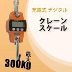 クレーンスケール 充電式  デジタルクレーンスケール 0.3t 300kg スケール 吊りはかり