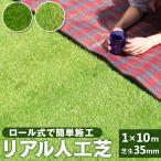 人工芝 ロール 1m×10m 芝丈30mm リアル 芝生 屋上緑化 テラス U字ピン付き ロールタイプ