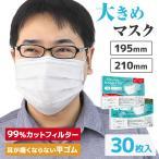 マスク 大きめ 2サイズ 不織布 10枚ずつ個包装 男性 三層構造 平ゴム仕様 立体プリーツ 使い捨て メンズ 大人用 白 大きいサイズ ビッグ Lサイズ