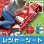 レジャーシート 厚手 大判 200cm×150cm 2畳 ピクニック シート クッション レジャーマット バッグ カラフル かわいい おしゃれ 2人用 3人用