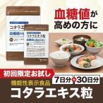 血糖値 サプリメント コタラエキス粒(30日分+7日分) 機能性表示食品