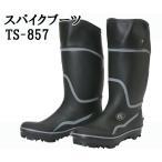 ║х┐└┴╟├╧е╧еєе╖еєене╕ TS-857ббе╣е╤едепе╓б╝е─бб