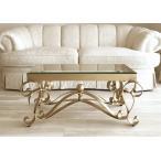 ●新商品●輸入 オーダー家具 アイアン センターテーブル アイーダ W100×D50cm ゴールド色