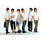 NEWS [ 公式グッズ ]  DOME PARTY 2010 クリアファイル